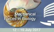 "EMBO | EMBL Symposium ""Mechanical Forces in Biology"" @ EMBL Heidelberg | Heidelberg | Baden-Württemberg | Germany"